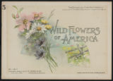 Wild flowers of America : flowers of every state in the American Union. Vol. 1., No. 05