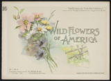 Wild flowers of America : flowers of every state in the American Union. Vol. 1., No. 16